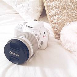 Momgoesmental: Canon Rebel and $500 Paypal Cash Giveaway