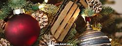 Balsam Hill Christmas Tree Family Traditions Photo Contest