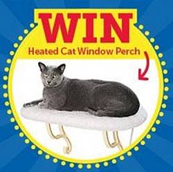 Answer Your Cat's Questions Day Sweepstakes