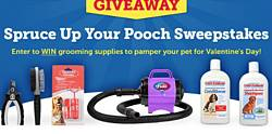 Spruce Up Your Pooch Sweepstakes